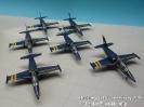 Breitling Jet Team Livery 2005