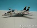 Grumman F-14A Tomcat VF-84