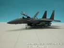 McDonnellDouglas F-15E Strike Eagle
