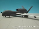 Northrop Grumman RQ-4E Eurohawk 99+01