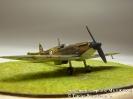 Supermarine Spitfire Mk I K 9794