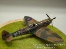 Supermarine Spitfire Mk II WZ-T