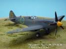 Supermarine Spitfire Mk XIX Gelbe 25