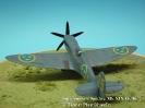 Supermarine Spitfire Mk XIX Gelbe 25_2