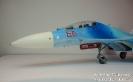 Suchoi Su-27UB rote 66 _2