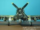 Douglas A-1J Skyraider 42029