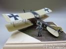 Albatros CIII C.766/16_1