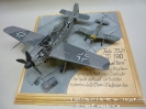 Focke Wulf FW-190 mit Hagelkorn_2