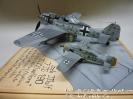 Focke Wulf FW-190 mit Hagelkorn_3
