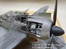 Focke Wulf FW-190 mit Hagelkorn_5