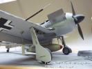 Focke Wulf FW-190 mit Hagelkorn_6