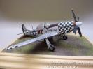 North American P-51D Mustang_1