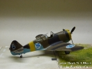Curtiss Hawk 75 A Blue 5_1