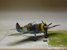 Curtiss Hawk 75 A Blue 5_2