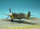 Curtiss P-40M KH-51
