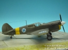 Curtiss P-40M KH-51