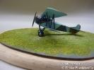 Fokker D VII_1