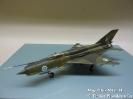 Mig 21bis MG-114_1