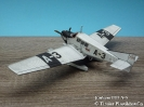 Junkers F13 A-3_1