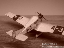 Junkers F13 A-3_3
